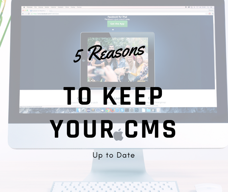 Dating cms software